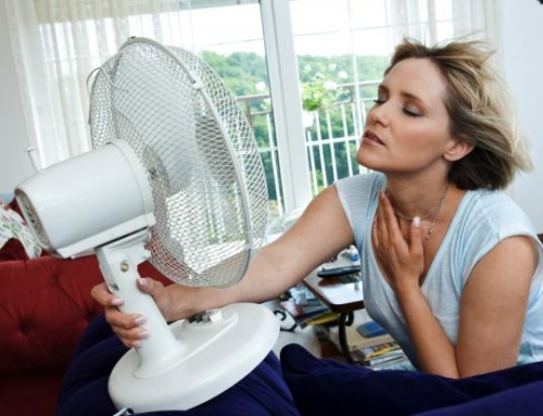 Beat the Heat! Be Careful Not to Grow Air Condition Duct Mold!